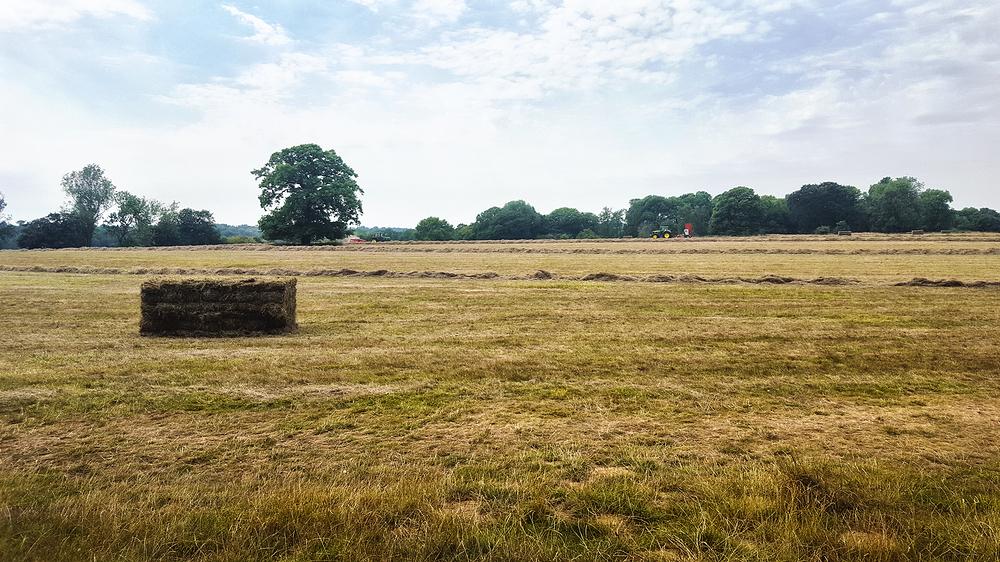 england banstead-woods farm field