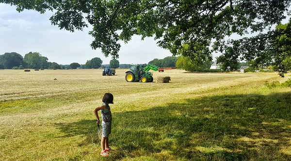 england banstead-woods farm field tractor mia
