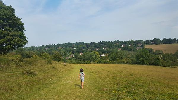 england banstead-woods farm field mia