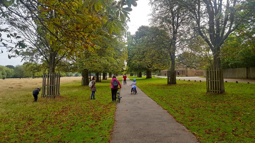 bushey-park england park mia mayumi