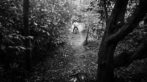 nonsuch-park park england mia