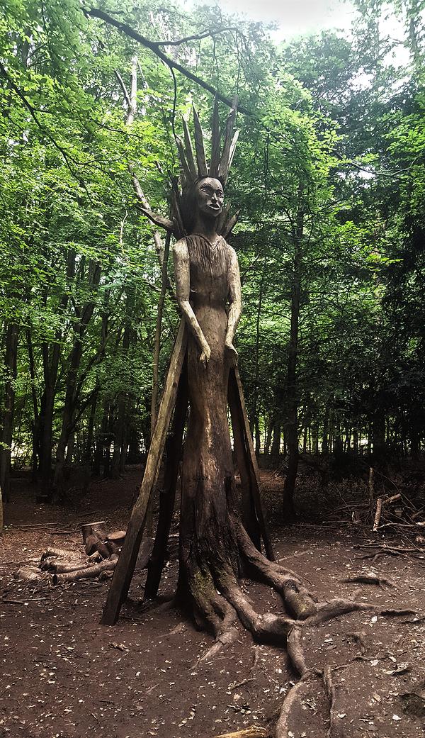 banstead-woods park england tree