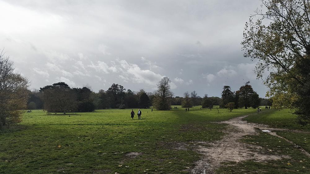 nonsuch-park park england