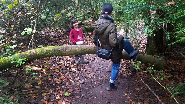 norbury-park england park mia mayumi
