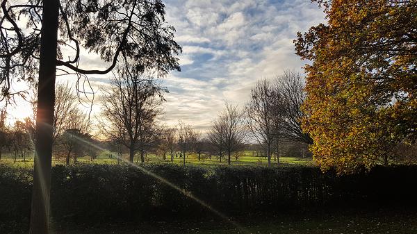 england nonsuch-park park