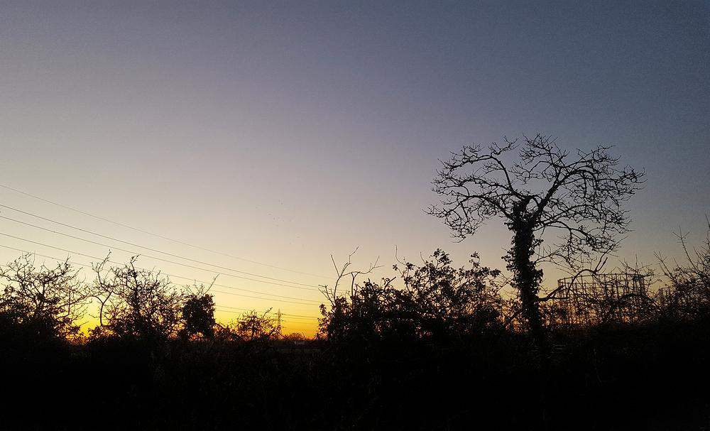 motspur-park england gasometer tree