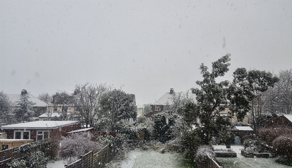 worcester-park england snow garden