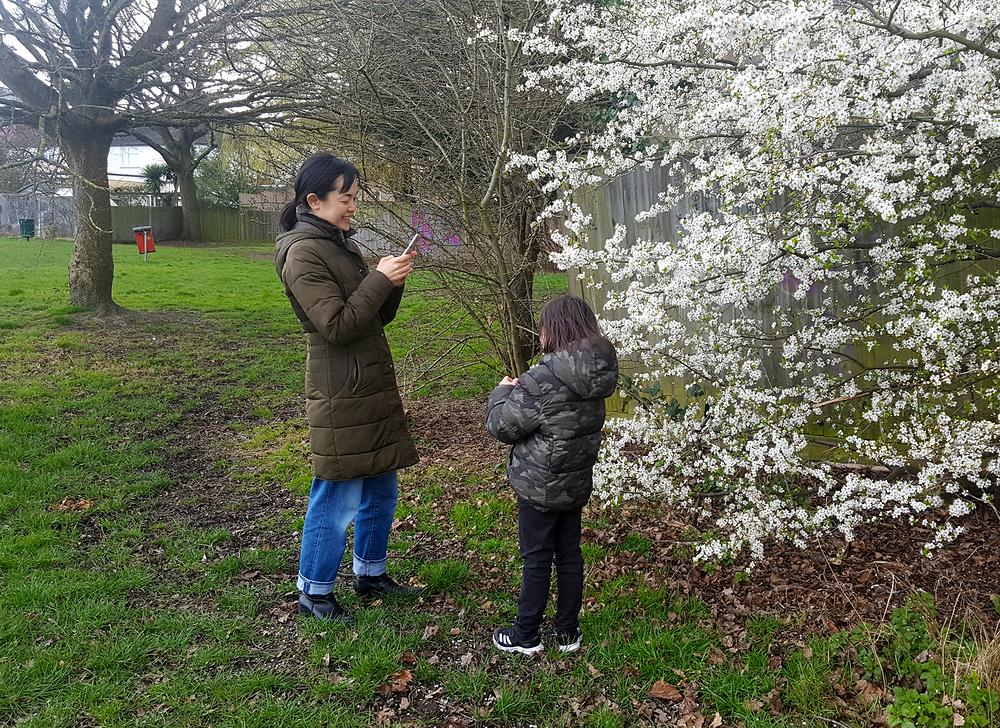 sutton england mia mayumi blossom park