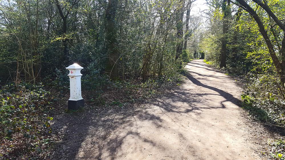 epsom epsom-common england park