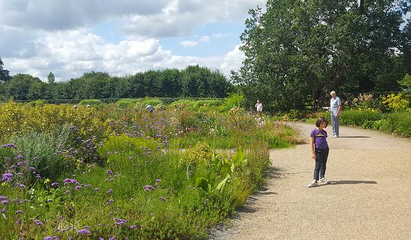 england wisley garden mia johnson