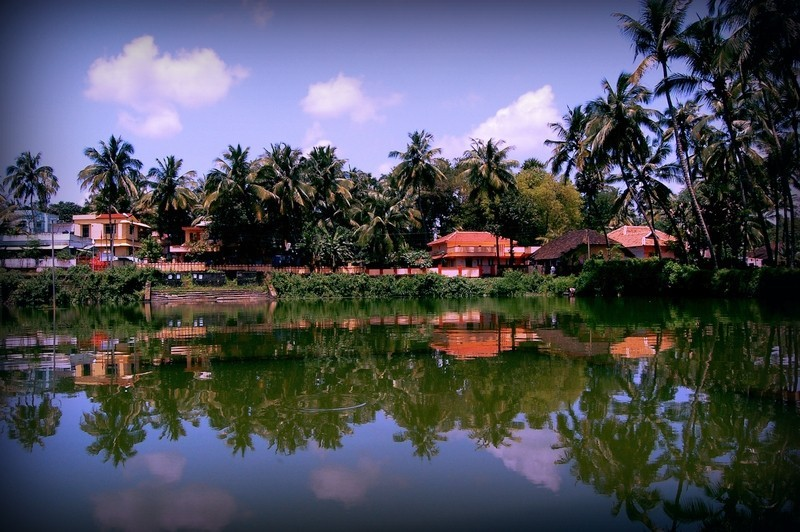 Reflections in Palaghat