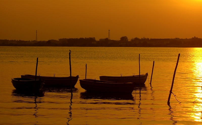 Boats and the evening shades of yellow