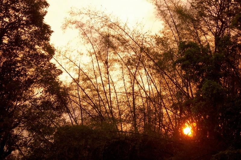 Nisargadhama sunset