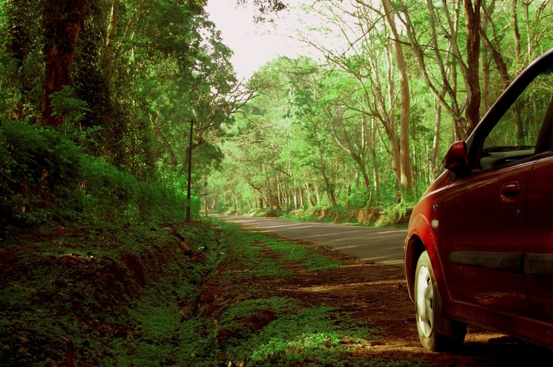 Road trip to Coorg