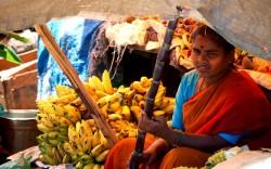 Selling Bananas!