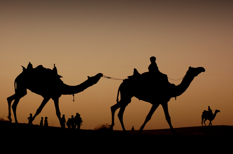 Journey across the Great Indian Desert