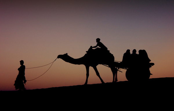 Silhoutte of the camel cart!