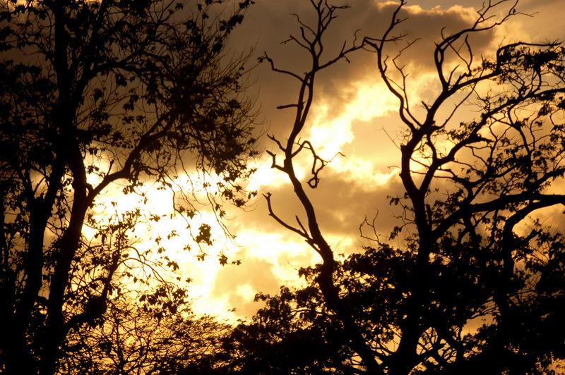 Following the setting sun