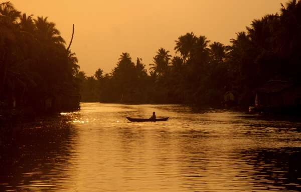 Deep into the backwaters