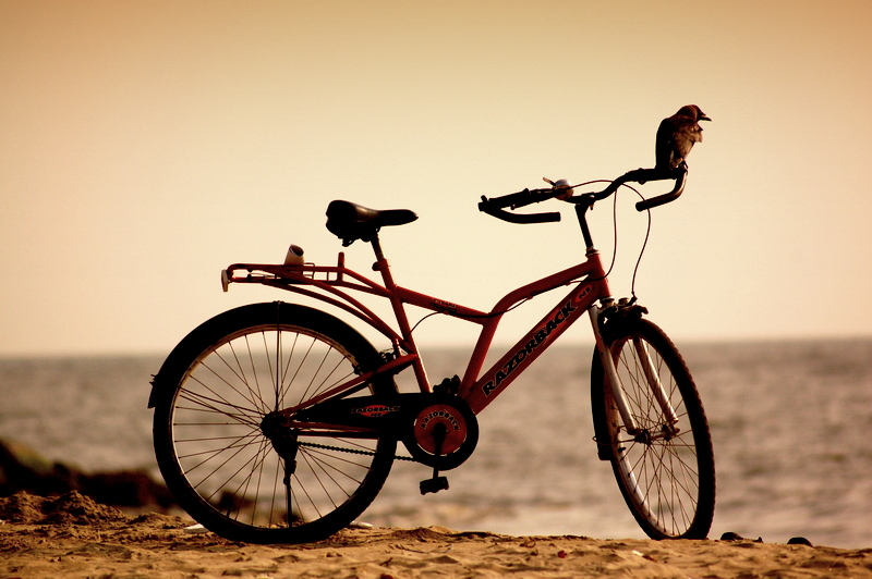 The new biker!