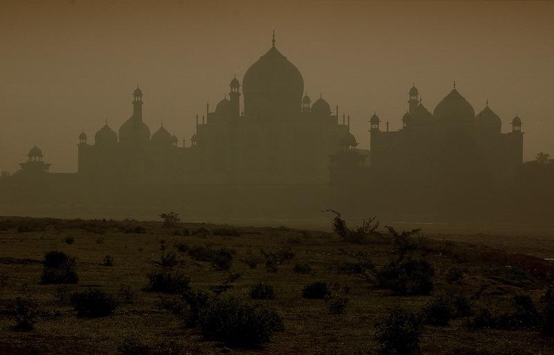 Good morning Taj!