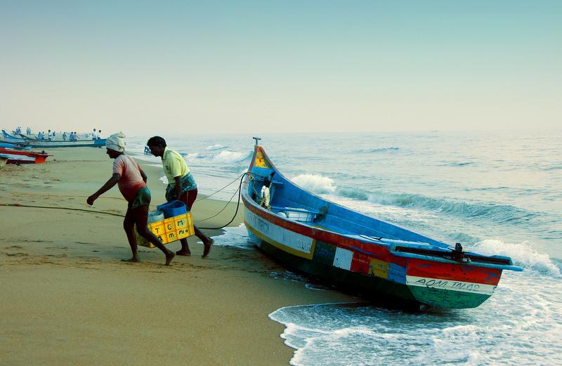Marina Fishing Fishermen Chennai