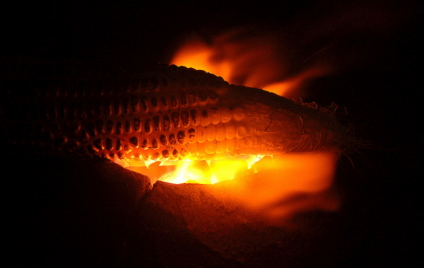 Heating up the corn