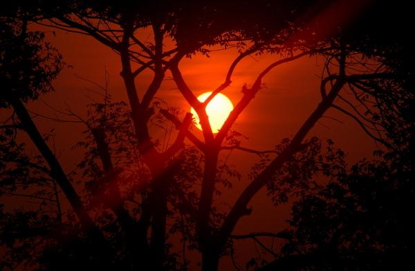 Sunrise near Cuddalore!