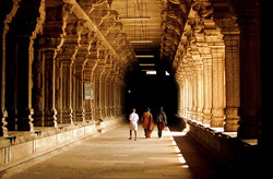 Ekambareshwarar Temple!