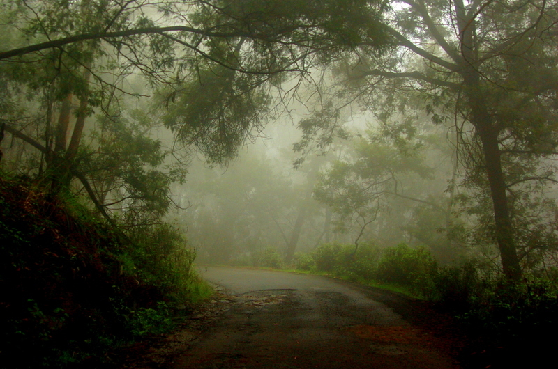 Rains, fog, those bends and that smell of Kodai!
