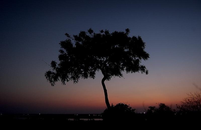 Twilight tones of Mahabalipuram