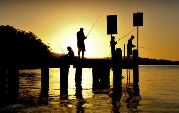 Evening fishing at the Nelsons Bay