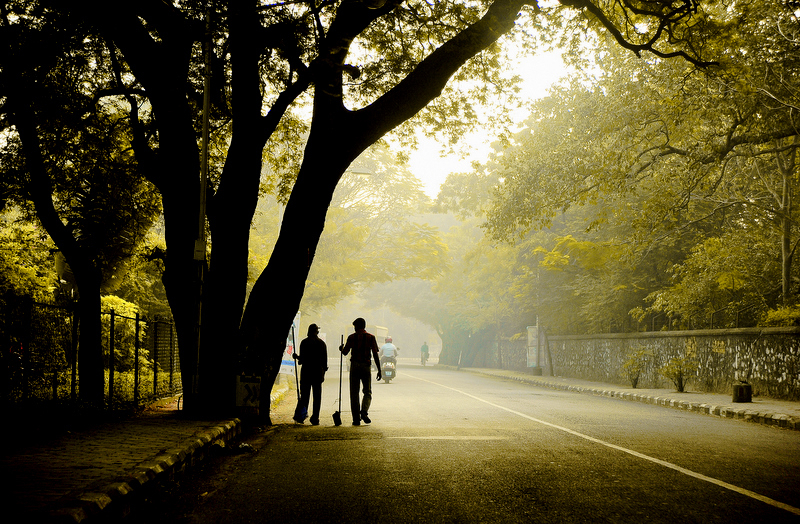 Bhogi Morning at Theosophical Society Road