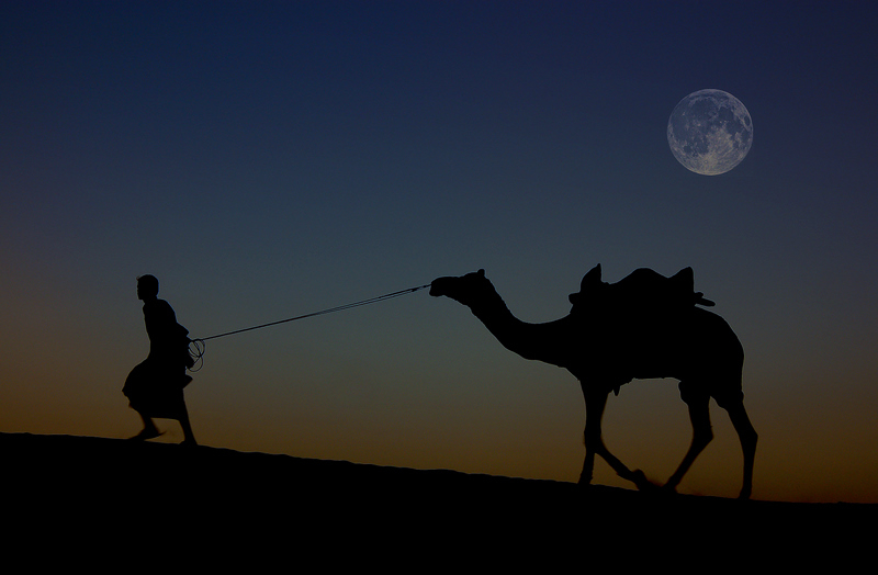 Moonlight at the Desert