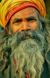 Yellows, Saffron and the Babaji