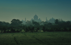 Fields of the Mughals