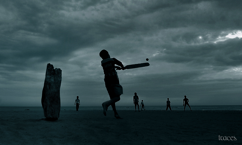 Cricket on a cloudy beach