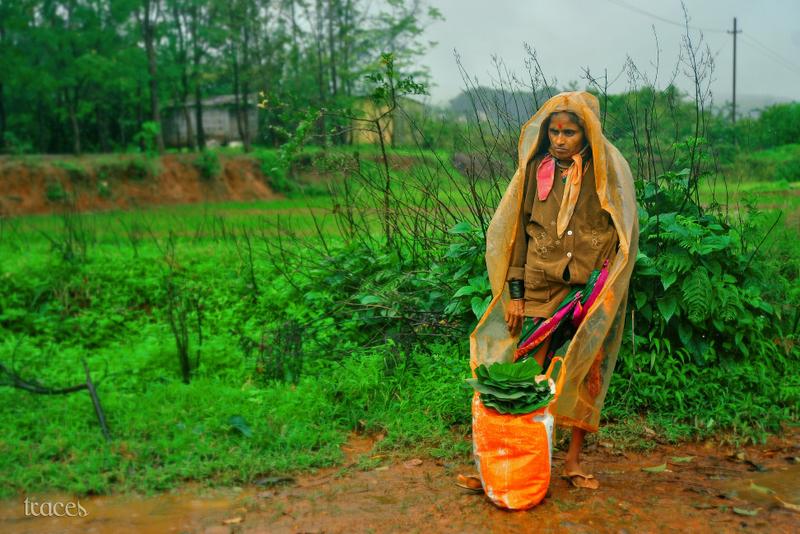 Woman near the fields of Thoseghar