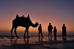 Exploring the Bay of Kutch