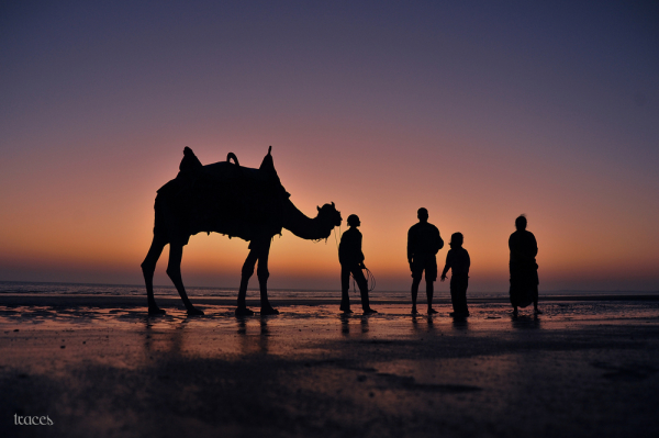 Aminus3 Featured photo Exploring the Bay of Kutch | 24 January 2013