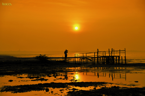 Photographing the morning at Pulicat