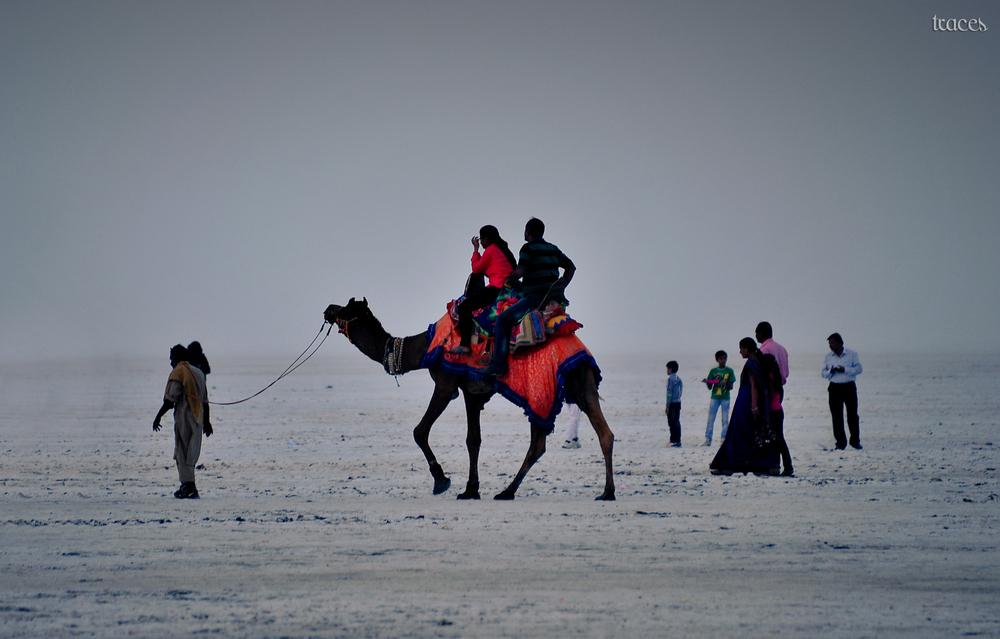 Riding on the white desert