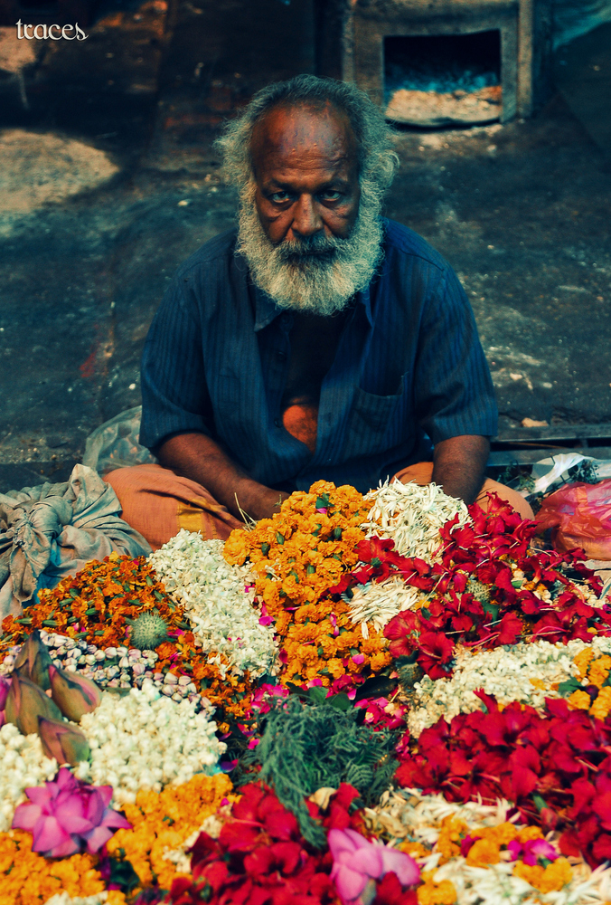 The old man and the flowers!