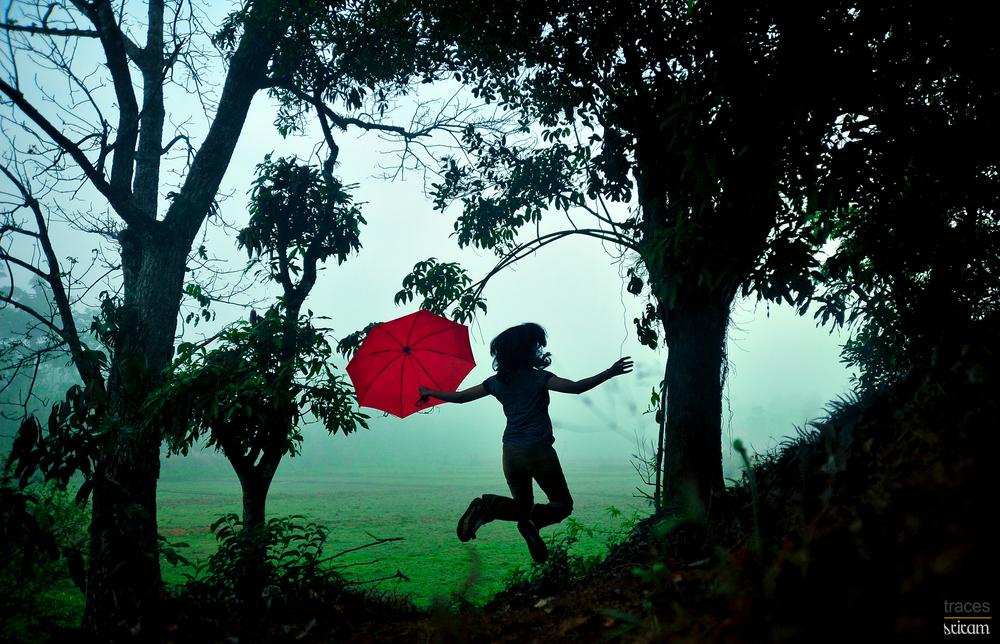 Mist and the joy