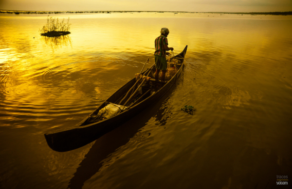 Golden ripples of a meticulous fisherman