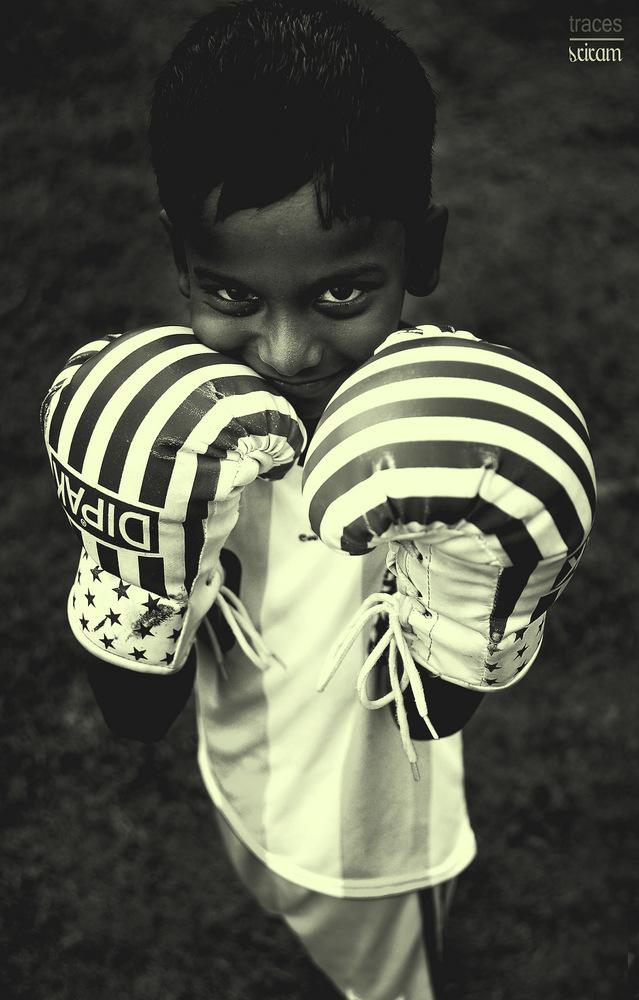 Little Boxer at Marina