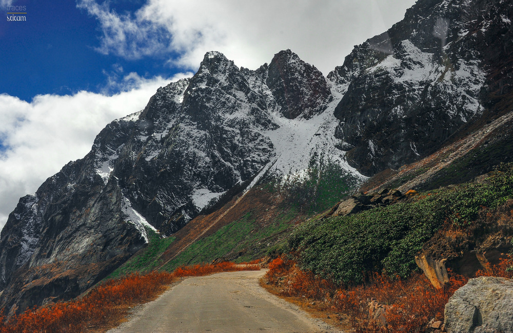 Yumthang roadscapes