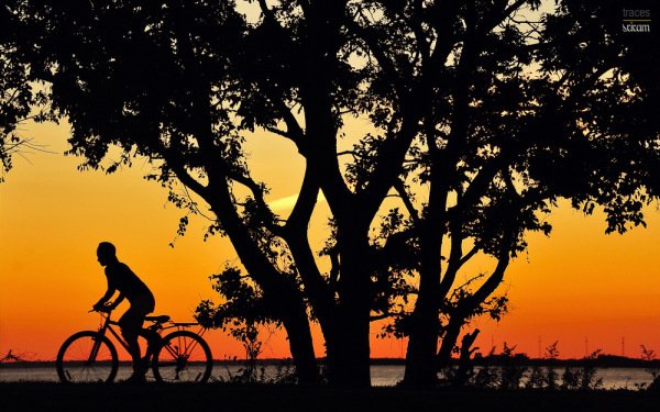Sunset cyclist