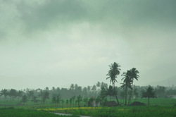 Monsoon down south