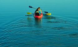 Canoe along the estuary
